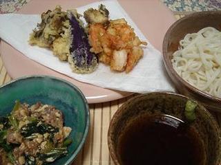 天ぷらと冷やしうどん.jpg